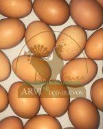 Arvi Eco Huevos